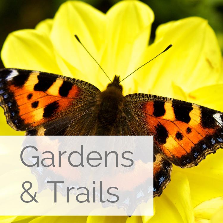 Garden Life, Hook Peninsula, Wexford