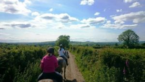 OldCourt-Riding-Stables-Riders-Whitechurch-Pony-Trek-Cross-Country-Wexford-Hook-Peninsula-768x432
